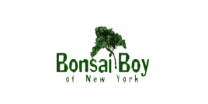 Up To $26 Off Bonsai Trees
